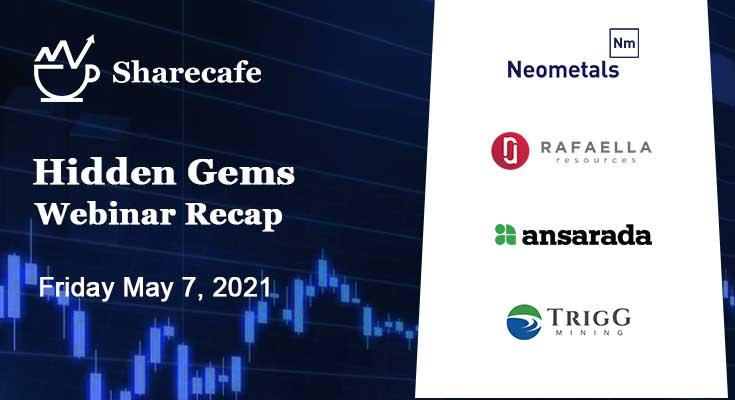 Hidden Gems Webinar Recap – NMT, AND, RFR, TMG
